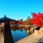 徳川園の紅葉祭