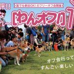 第14回 日本最大わんこのマルシェ「わんだらけ」。