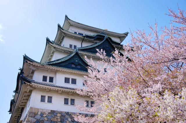 名古屋で楽しむお花見情報2020