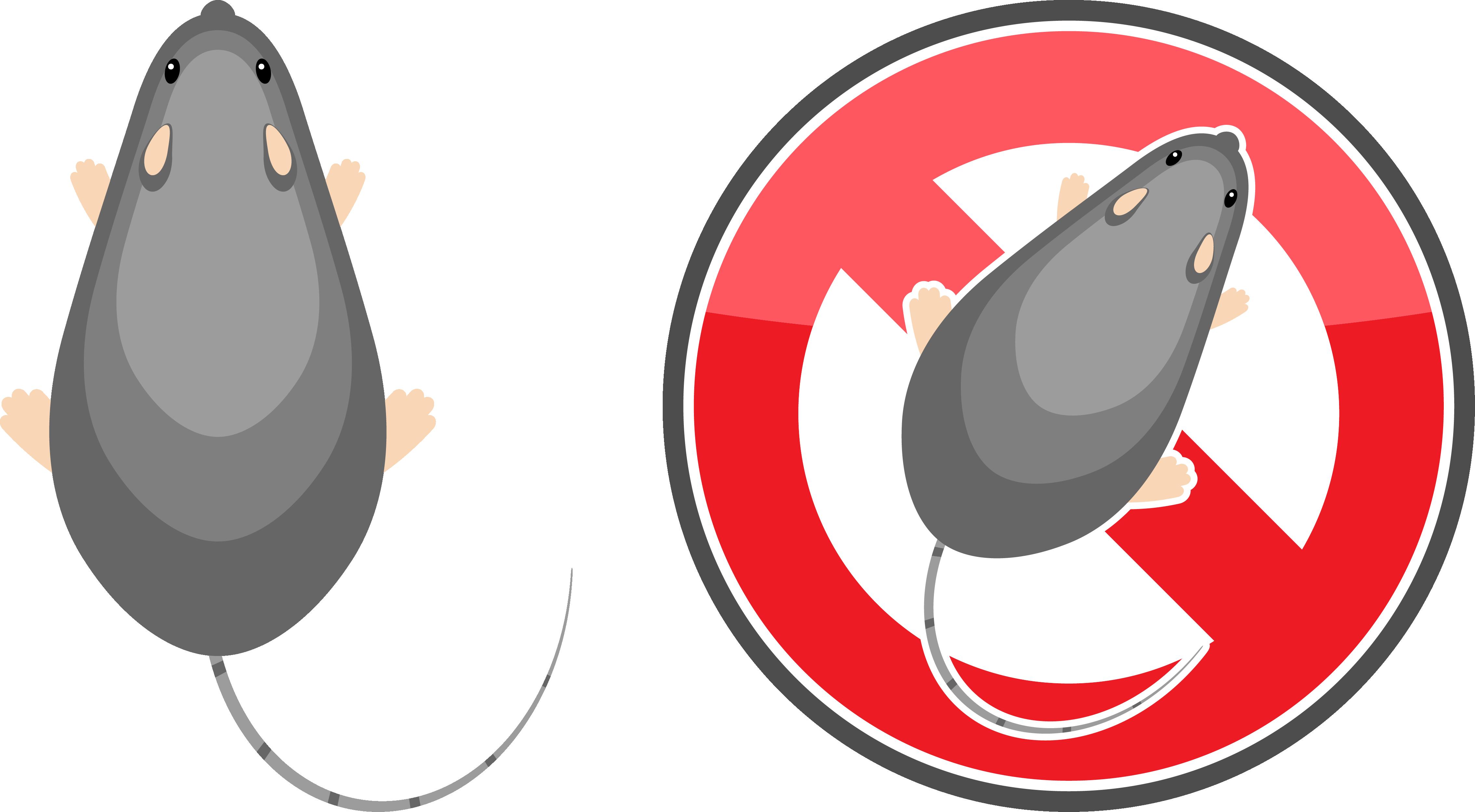 名古屋のネズミ駆除:ネズミ対策はネズミに嫌われること