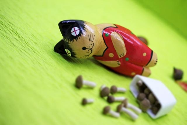 名古屋のネズミ駆除:多いのはクマネズミの被害